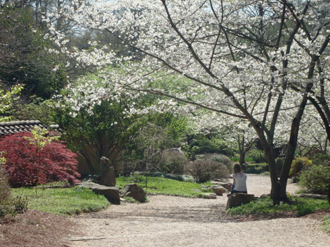 Jardim Botânico de Birmingham na primavera
