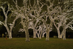 Luzes de Natal em Johnson City