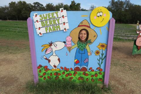 juliasweetberryfarm