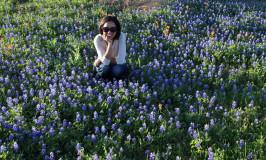 Primavera em Austin: bluebonnets, granizo e tornados