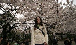 Resumo da viagem ao Japão