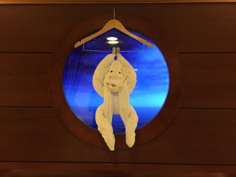 O macaco no último dia
