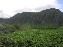 montanhasdeoahu