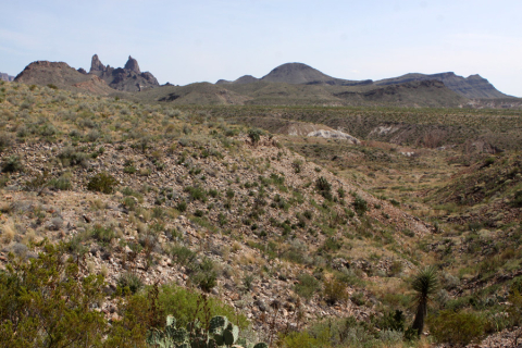 Mule Ears Peaks, Big Bend National Park