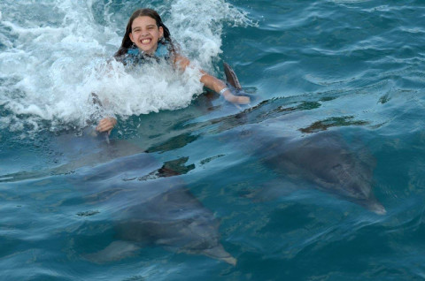 Nadando com golfinhos em Isla Mujeres