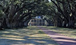 A New Orleans das fazendas e pântanos