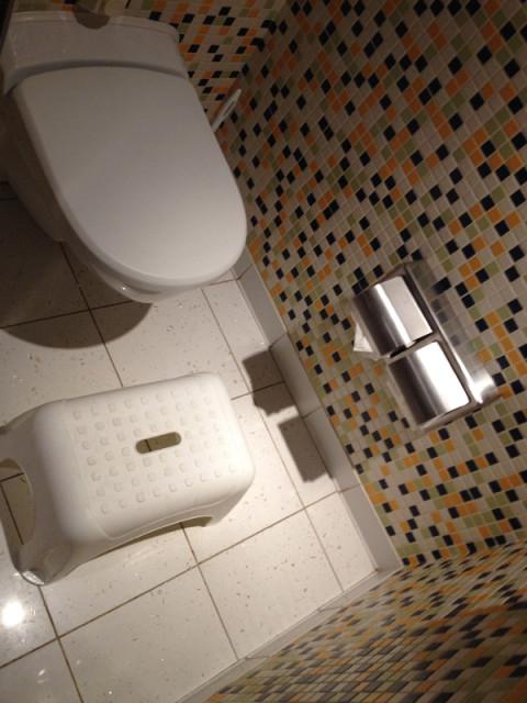 O vaso sanitário além de rebaixado ainda tem um banquinho