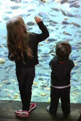 Julia e Eric doidinhos com os peixes em Pangani Forest