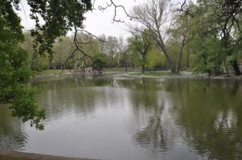 Mais uma do Parque da Cidade