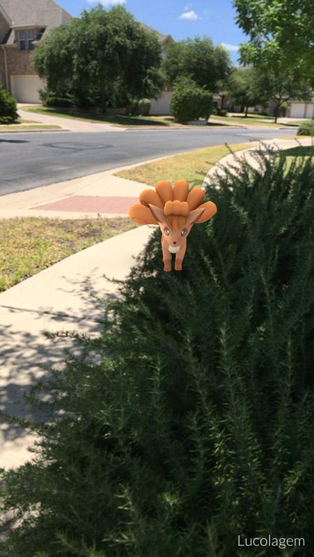 Um Vulpix no jardim de uma casa aqui na vizinhança