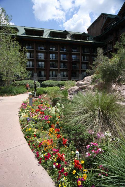 Tudo florido no Wilderness Lodge em abril