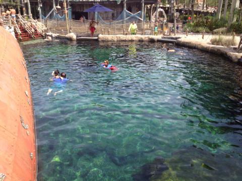 Pra quem quer fazer snorkel e dar uma olhadinha de perto em tubarões, raias e outros peixes