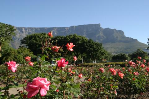 Dicas de viagem para a África do Sul: Table Mountain, Cidade do Cabo