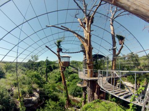Vários níveis de observatórios