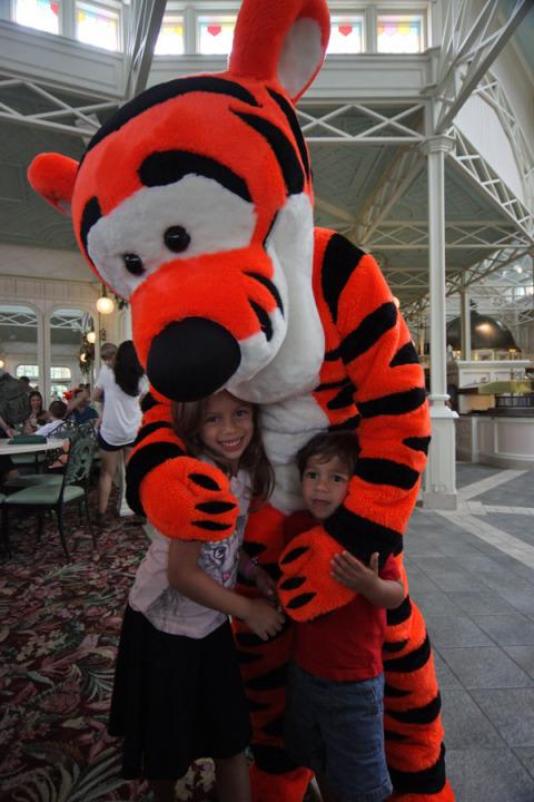 Abraço no Tigrão