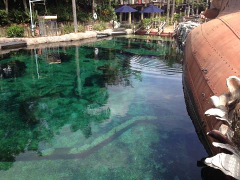 Shark Reef - esse lado não estava sendo usado